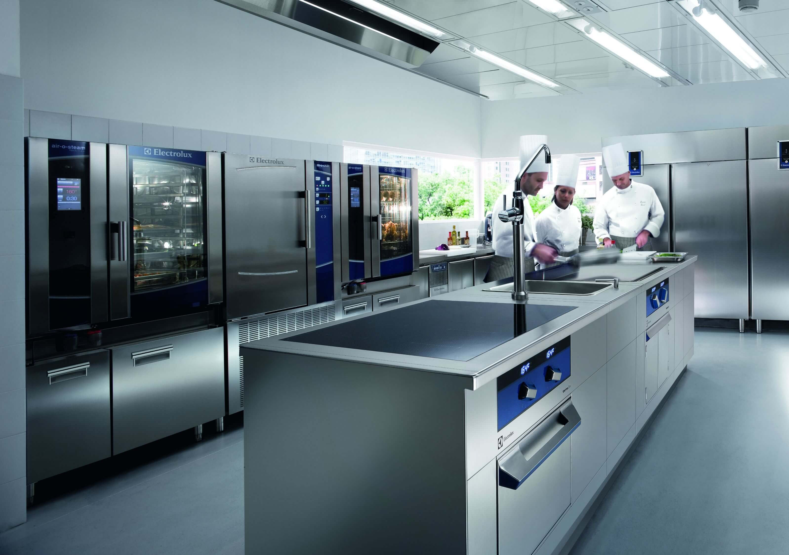 Electrolux Professional AB picks Treasury Systems